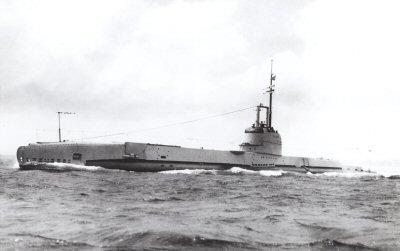 HMS Salmon