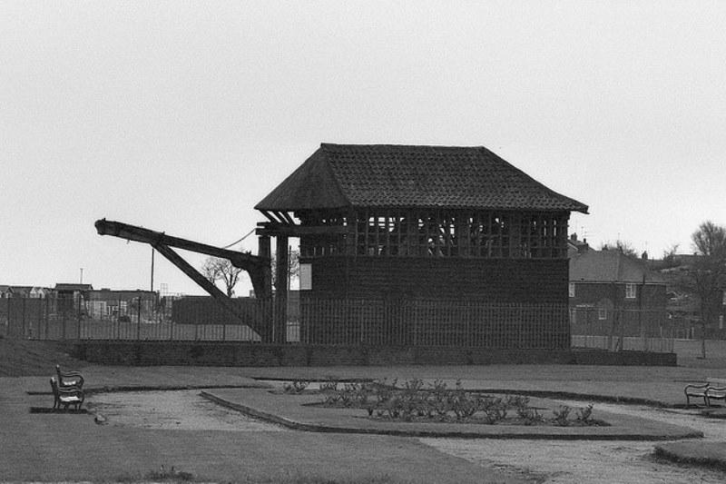 Treadwheel Crane